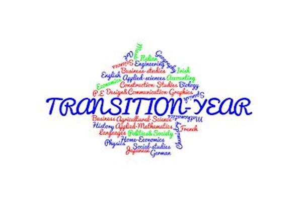 Transition Year Primary Teaching Programme